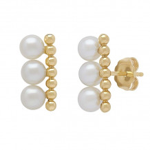 Honora 14k Yellow Gold Icon Earrings - BX74875PL1
