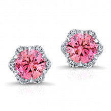 Kattan 18k White Gold La Vie en Rose Stud Earrings - AED0117P85